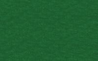 Fotokartong URSUS 50x70 300g mørk grønn